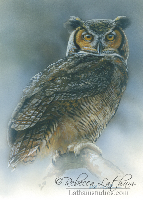 Great Horned Owl, 5in x 7in, opaque and transparent watercolor with sterling silver and 24kt gold on board, ©Rebecca Latham