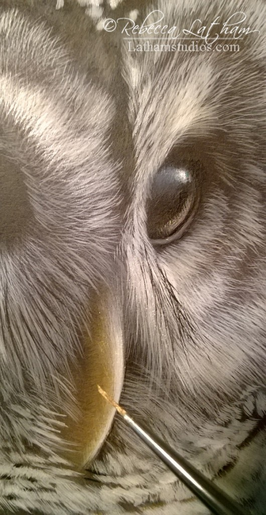 Applying gold to a painting.  Shimmers of silver can be seen at this angle as well in the feathers and eye of the owl.