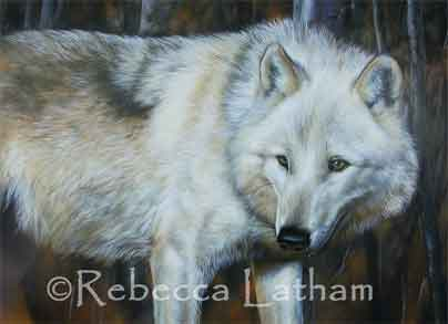 http://www.lathamstudios.com/rebeccasblog/blog/wp-content/images/WhiteWolfPainting-Dec05.jpg