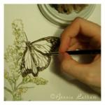 Butterfly-in-progress-8-16-